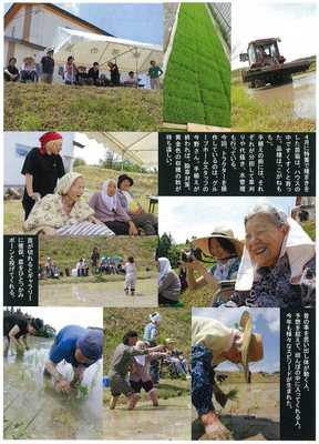 田んぼ�A(通信7月号).jpg